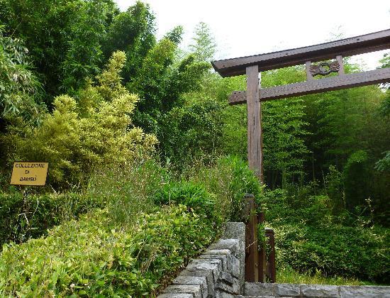 Il giardino Zen di Villa Carlotta
